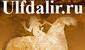 Ulfdalir