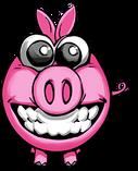 Pig Happy