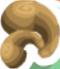 Cashews symbol