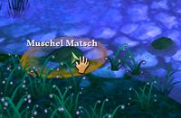 Muschel Matsch