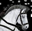 Mount weißesPferd