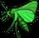 Insekt schlaukrautbohrer