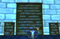 Verwunschenes Bücherregal