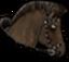 Reittier dunkelbraunesPferd