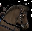 Mount Pferd