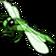 Insekt viridianLibelle