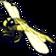 Insekt feldgraueLibelle