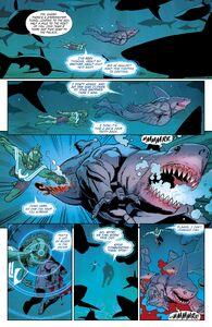 The Shark final moemnt