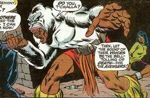 Man-Ape 06