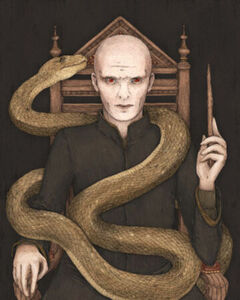VoldemortBooksWikia