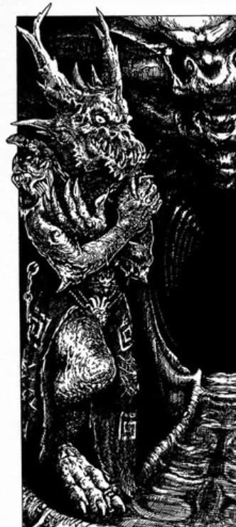 Mage Servant du Dragon de la Nuit