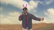 D-Bag Bunny
