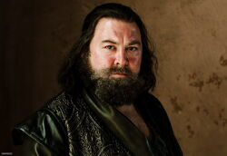 Robert-Baratheon-house-baratheon-29677184-500-344