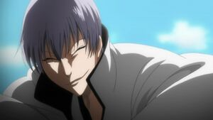 Gin Ichimaru2