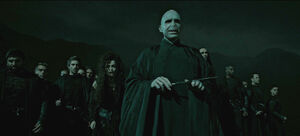 Lord Voldemort & the Death Eaters