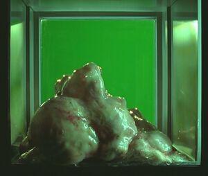The Blob 478546