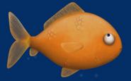 GoldfishTB6