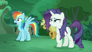 'RD' --The changelings disguise themselves as Rarity and Rainbow Dash