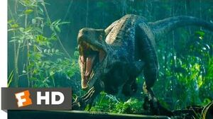 Jurassic World Fallen Kingdom (2018) - Reunited with Blue Scene (2 10) Movieclips
