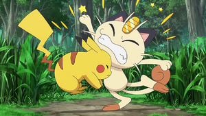 Pikachu and Meowth Collide with Each Other