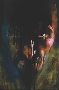 Hawkman Vol 5 14 Textless Variant.jpg