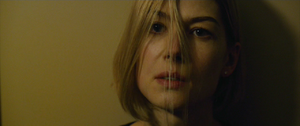 Rosamund Pike as Amy Dunne 17