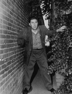 Bill Raisch one armed man The Fugitive 1965