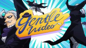 Gentle Video