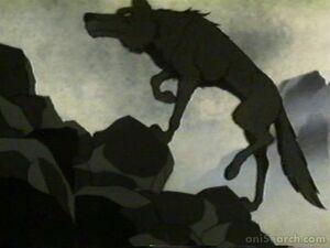 Wolf climbs