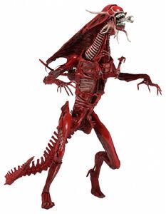 1300x-Red Queen2