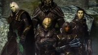 The Fists of Thalmor Paramilitary