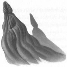 Shadowy Dementor