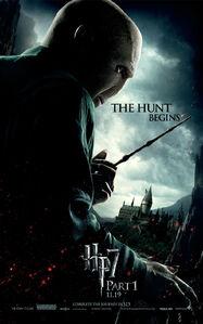 Voldemortactionposter
