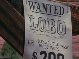 Bounty for Lobo