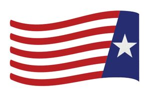 The New Founding Fathers of America Flag