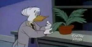 Dr. Reginald Bushroot