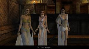 Brides of Dracula game