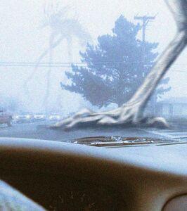 Misty Storm Wanderers