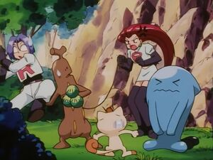 Team Rocket and Sudowoodo