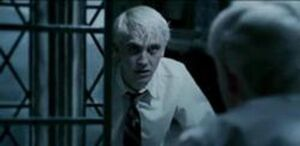 250px-Draco Malfoy mirror