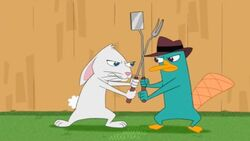 Dennis vs Perry