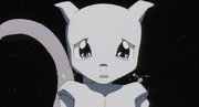 800px-Young Mewtwo crying
