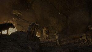 Scar Stuck By Hyenas