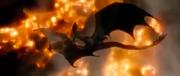 Smaug's death (Hobbit film 3)