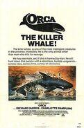 Orca KW