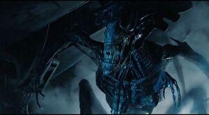 Aliens-movie