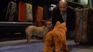 Garfield-movie-screencaps.com-7922