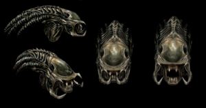 Predalien s head collage autumn 2015 by lucienfreiheit-db0aqvj