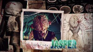 Jasper weakpoint