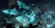 Shark Chariot